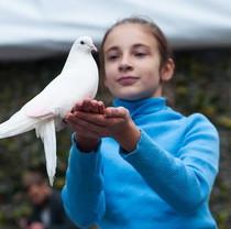 Feldman Ecopark invites to watch Parade of animals