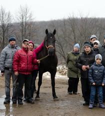 Feldman Ecopark gives horse riding lessons for special children