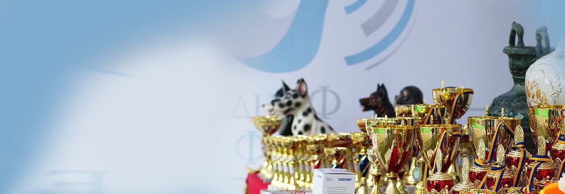 В Харькове прошла крупнейшая Международная выставка собак