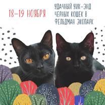 В Фельдман Экопарк на выходных пройдет «Большая котовасия»