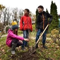 Именное дерево и подшефный питомец – новые опции программы «Фельдман Экопарк – народный парк»