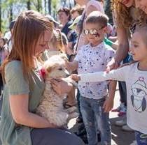 «Добрый дом Фельдман Экопарк» возобновляет акции по пристройству бездомных животных