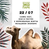 В Фельдман Экопарк пройдет День верблюда