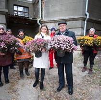 Бал хризантем-2018 официально завершен – тысячи цветов подарят школам и больницам