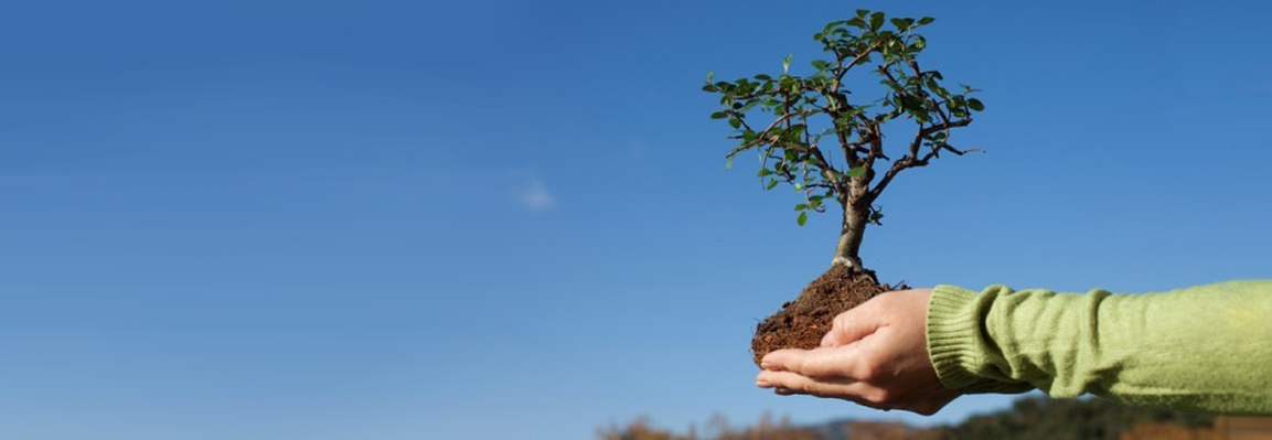 Екологічна безпека має стати одним з пріоритетних питань національного порядку денного – Фельдман